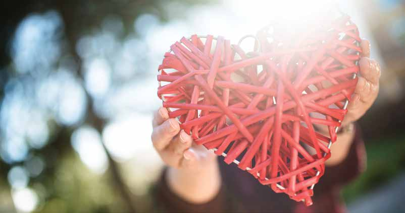 person holding decorative heart